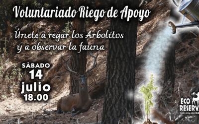 Summer volunteer event in the Sierra de las Nieves